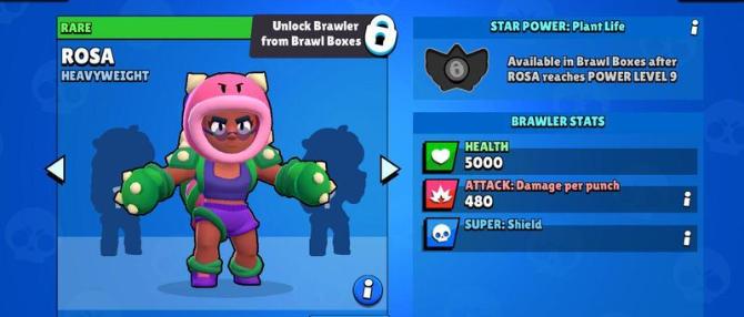 Rosa - новый персонаж Браво Старс