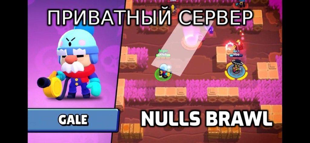 ПРИВАТНЫЙ СЕРВЕР nulls